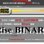 価格上昇をサイン表示するバイナリーツール ロジックの評判「Rise-BINARY」