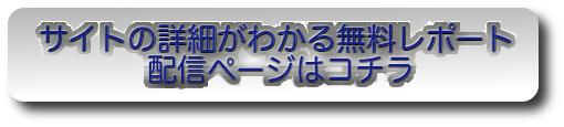 サイトの詳細,無料レポートボタン