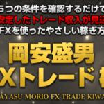 "FXのファンダメンタル分析で相場を判断 初心者のルールとは""岡安盛男のFX 極"""