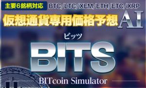 仮想通貨BITSの内容がわかる画像