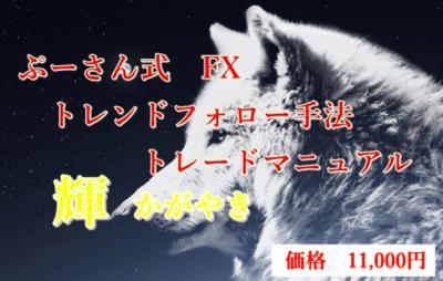 ぷーさん式トレードマニュアル輝の価格付きトレンドフォロー手法